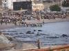 dakar-fish-market-02